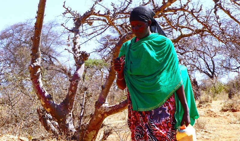 Woman walking in rural Ethiopia
